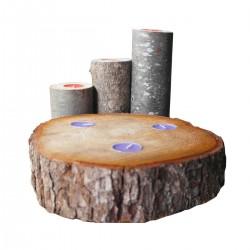Ağaç Mumluk Set